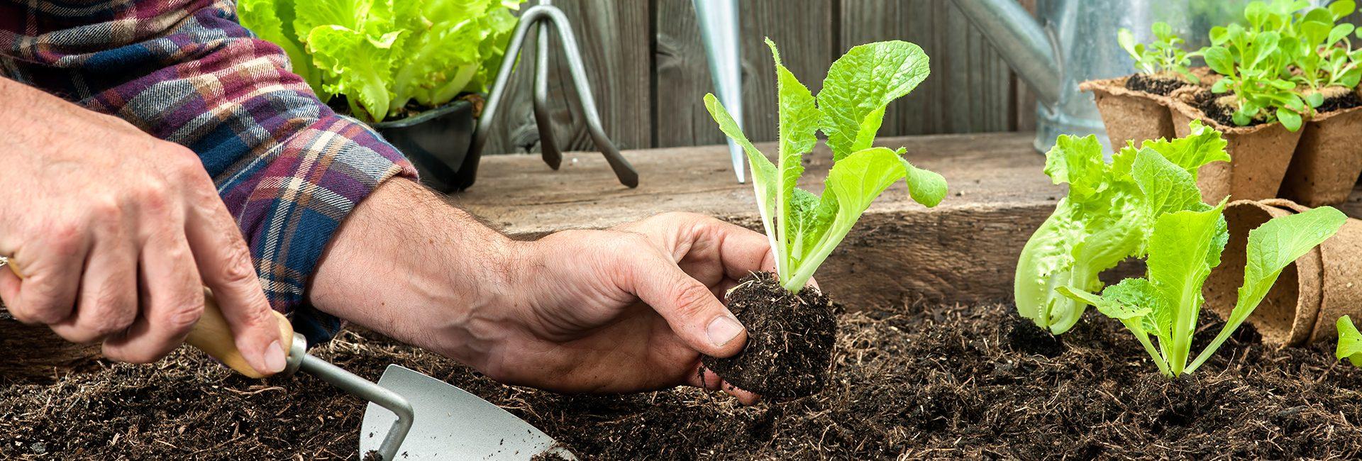 Gartenbedarfsartikel